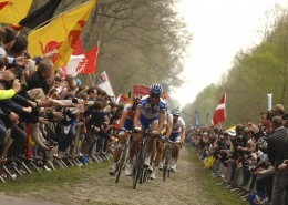 Paris-Roubaix Legend Tom Boonen Leading The Peleton up Arenberg